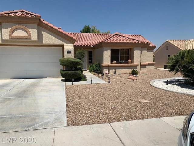 9044 Grayling Drive, Las Vegas, NV 89134 (MLS #2218613) :: Realty One Group