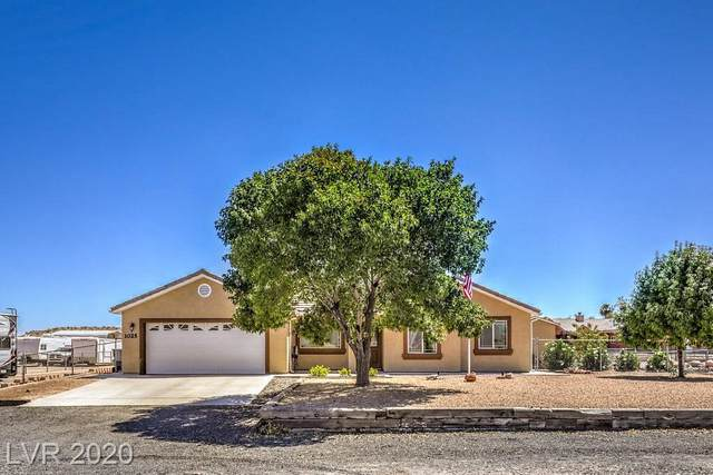 1025 Mcknight Avenue, Moapa, NV 89025 (MLS #2218679) :: Performance Realty