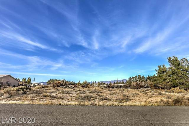 3100 E Navajo Boulevard, Pahrump, NV 89060 (MLS #2219838) :: Helen Riley Group | Simply Vegas