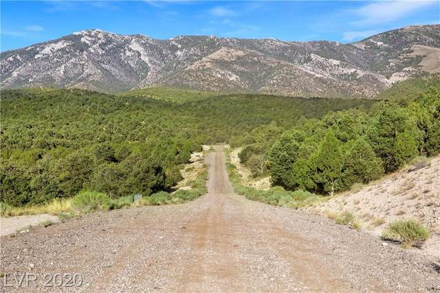 4900 E Bird Creek Road Lot 8, Ely, NV 89301 (MLS #2220354) :: Helen Riley Group | Simply Vegas