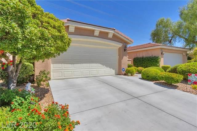4664 Regalo Bello Street, Las Vegas, NV 89135 (MLS #2220401) :: Billy OKeefe | Berkshire Hathaway HomeServices