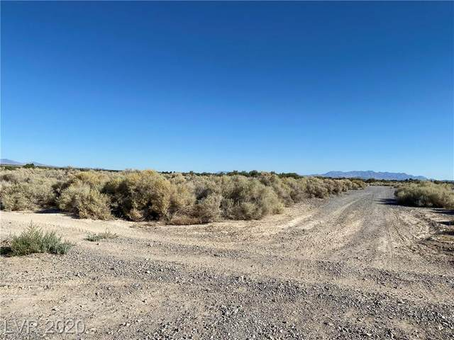 3601 Gamebird Road, Pahrump, NV 89048 (MLS #2220494) :: The Mark Wiley Group | Keller Williams Realty SW