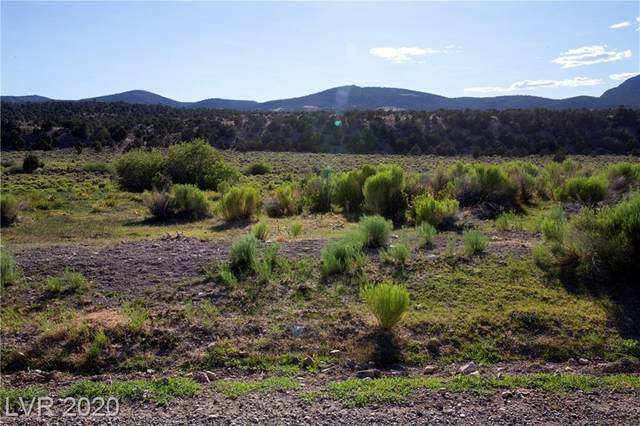 Duck Creek Development, Ely, NV 89301 (MLS #2220538) :: The Mark Wiley Group | Keller Williams Realty SW