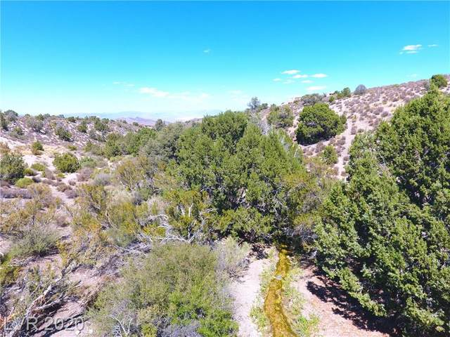 Bugling Bull Road, Cold Creek, NV 89124 (MLS #2220899) :: Billy OKeefe | Berkshire Hathaway HomeServices