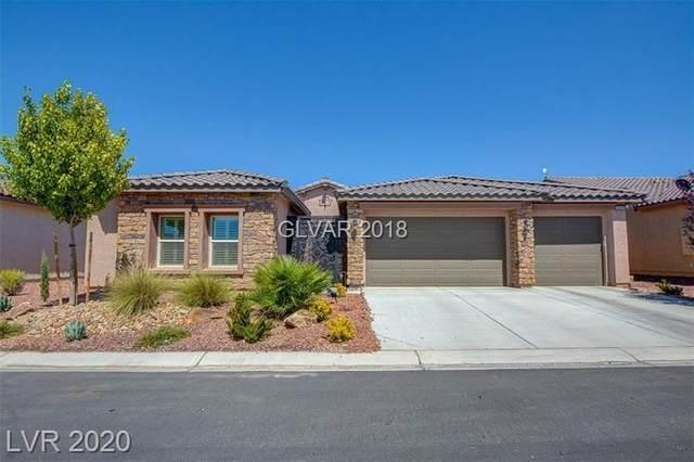 4300 La Romita Street, Pahrump, NV 89061 (MLS #2221906) :: Helen Riley Group | Simply Vegas
