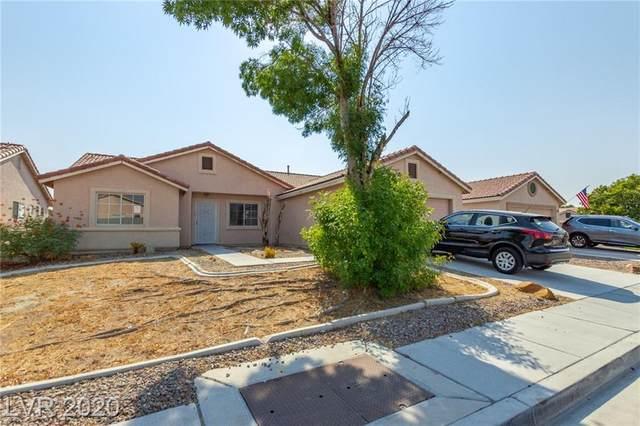 4618 Zia Ridge Street, North Las Vegas, NV 89031 (MLS #2225499) :: Jeffrey Sabel