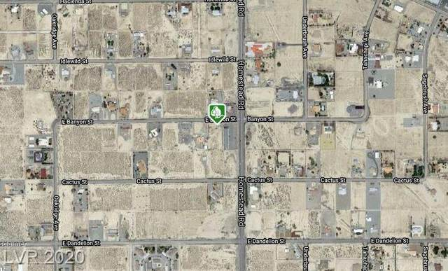 2951 Banyon Street, Pahrump, NV 89048 (MLS #2225623) :: Kypreos Team