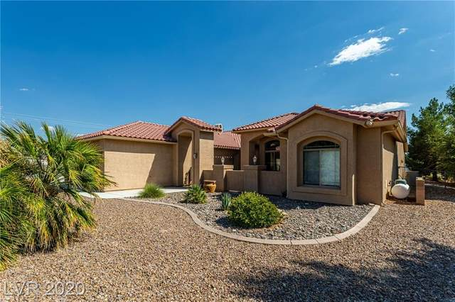 2570 N David Street, Pahrump, NV 89060 (MLS #2226328) :: The Mark Wiley Group | Keller Williams Realty SW