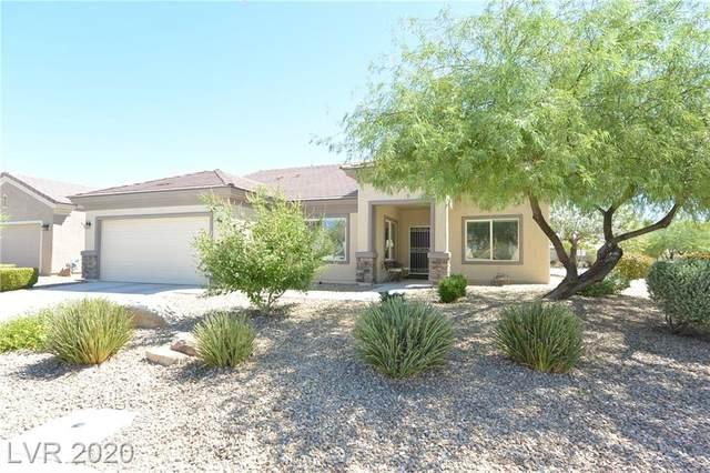3445 Lapwing Drive, North Las Vegas, NV 89084 (MLS #2230236) :: Hebert Group   Realty One Group