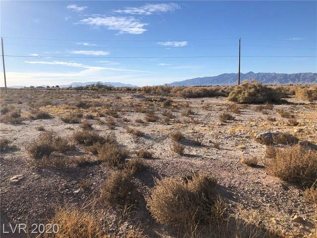2021 Ambush Street, Pahrump, NV 89048 (MLS #2231050) :: The Lindstrom Group