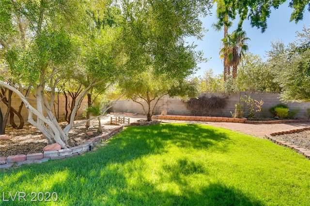 6125 Laredo Street, Las Vegas, NV 89146 (MLS #2231542) :: The Lindstrom Group