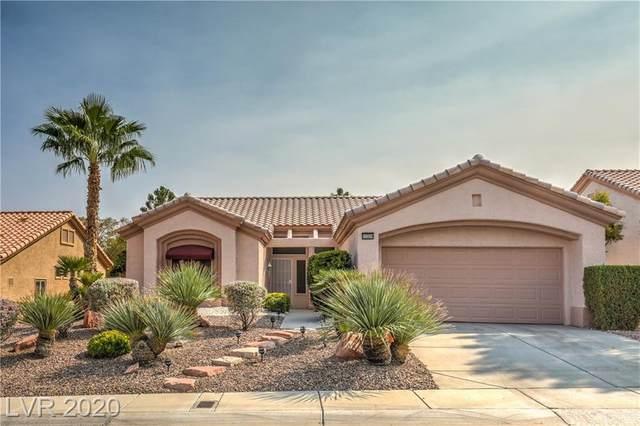 10509 Broom Hill Drive, Las Vegas, NV 89134 (MLS #2232549) :: Jeffrey Sabel