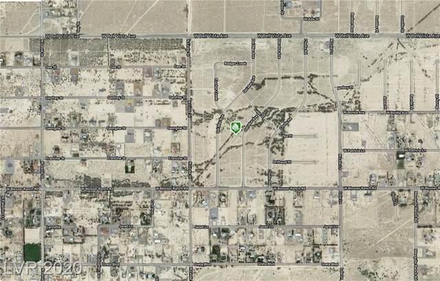 2690 N Decatur Avenue, Pahrump, NV 89060 (MLS #2233261) :: Helen Riley Group | Simply Vegas