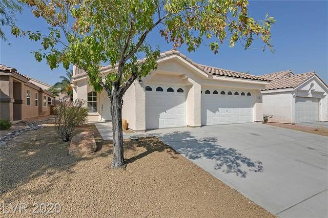 3413 Steppe Street, North Las Vegas, NV 89032 (MLS #2234107) :: ERA Brokers Consolidated / Sherman Group