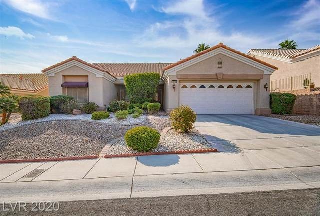 10705 Date Creek Avenue, Las Vegas, NV 89134 (MLS #2238619) :: The Lindstrom Group