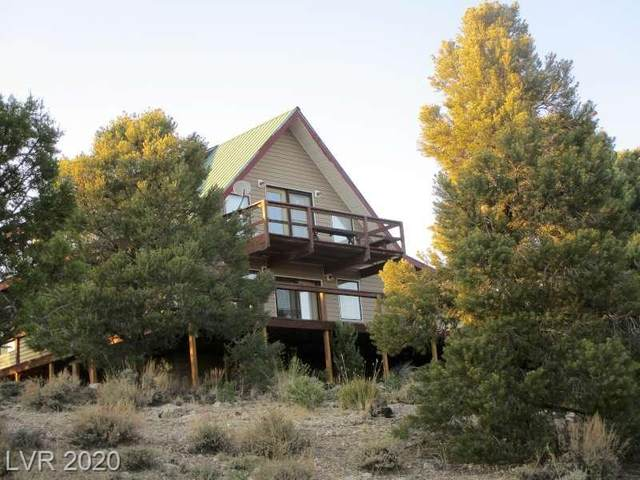 1281 Meadow Lane, Pioche, NV 89043 (MLS #2238646) :: Signature Real Estate Group
