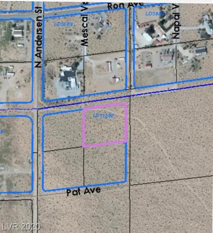 Off Pat And Anderson, Overton, NV 89040 (MLS #2238918) :: The Lindstrom Group