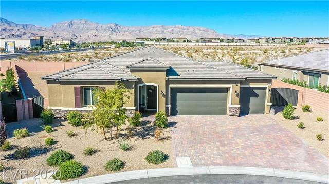 6821 Cold Desert Street, Las Vegas, NV 89149 (MLS #2239260) :: The Lindstrom Group