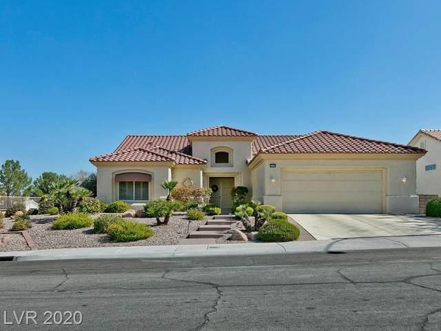2520 Rocky Plains Drive, Las Vegas, NV 89134 (MLS #2239857) :: The Shear Team
