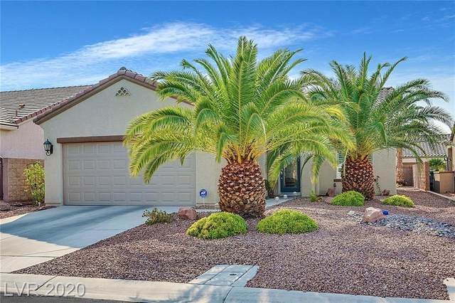 2221 Merrimack Valley Avenue, Henderson, NV 89044 (MLS #2241053) :: Hebert Group | Realty One Group