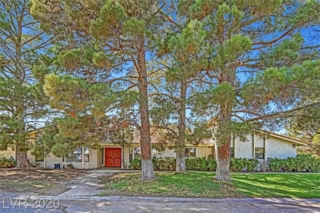 6295 Patrick Lane, Las Vegas, NV 89118 (MLS #2241151) :: Billy OKeefe | Berkshire Hathaway HomeServices