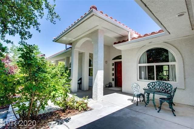 3280 E Easy Street, Pahrump, NV 89061 (MLS #2241577) :: Billy OKeefe | Berkshire Hathaway HomeServices