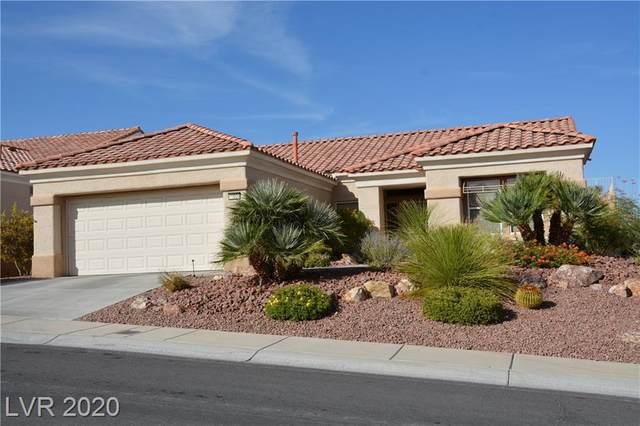 11008 Sundown Hill Avenue, Las Vegas, NV 89134 (MLS #2242186) :: The Perna Group