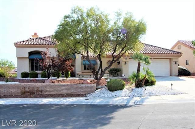 3104 Birch Hill Court, Las Vegas, NV 89134 (MLS #2242289) :: Signature Real Estate Group