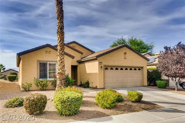 2505 Corvus Street, Henderson, NV 89044 (MLS #2242543) :: Vestuto Realty Group