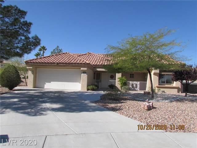 9925 Arbuckle Drive, Las Vegas, NV 89134 (MLS #2242779) :: Signature Real Estate Group