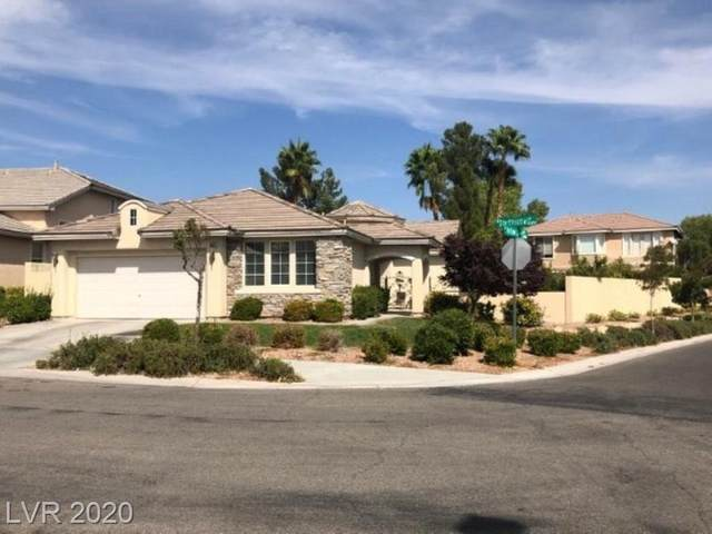 10376 Starthistle Lane, Las Vegas, NV 89135 (MLS #2242880) :: Signature Real Estate Group