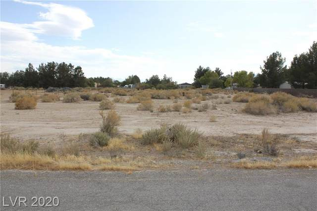 1791 Carson Street, Pahrump, NV 89048 (MLS #2246738) :: Hebert Group | Realty One Group