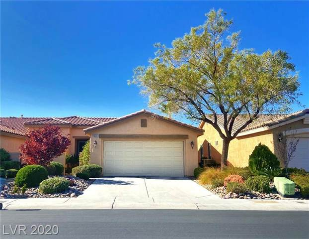 10227 Maggira Place, Las Vegas, NV 89135 (MLS #2248304) :: The Lindstrom Group