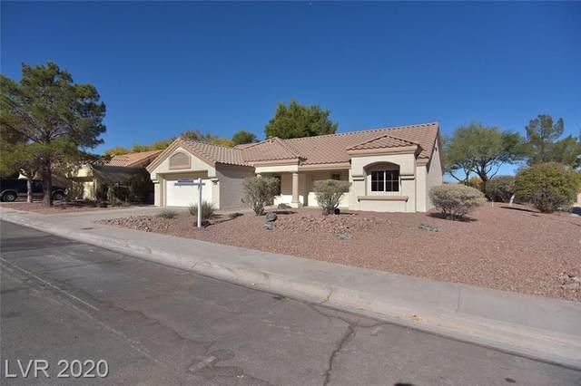 8728 Litchfield Avenue, Las Vegas, NV 89134 (MLS #2249308) :: Signature Real Estate Group