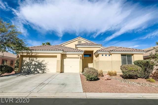 3020 Tanagrine Drive, North Las Vegas, NV 89084 (MLS #2249474) :: The Shear Team