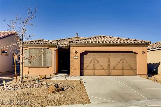 3744 Garnet Heights Avenue, Las Vegas, NV 89081 (MLS #2249879) :: Jeffrey Sabel
