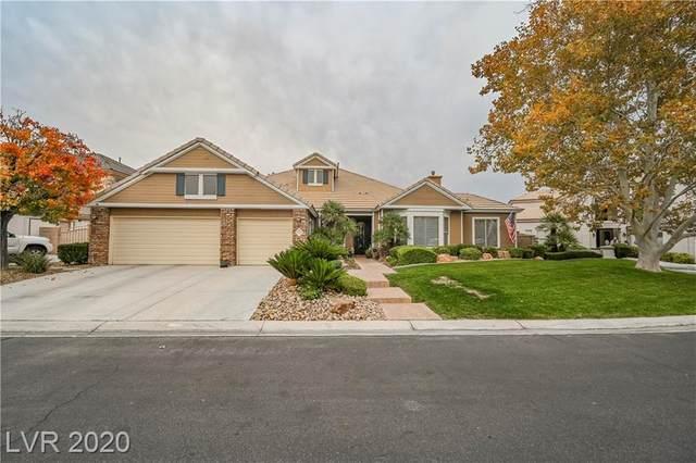 1704 River Birch Street, Las Vegas, NV 89117 (MLS #2250193) :: Signature Real Estate Group