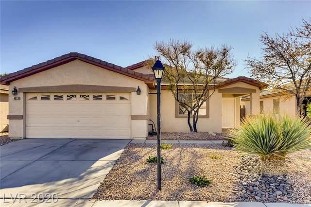 4929 Peaceful Pond Avenue, Las Vegas, NV 89131 (MLS #2250242) :: The Lindstrom Group