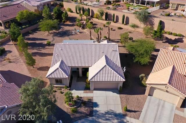 2209 Hot Oak Ridge Street, Las Vegas, NV 89134 (MLS #2250437) :: Signature Real Estate Group