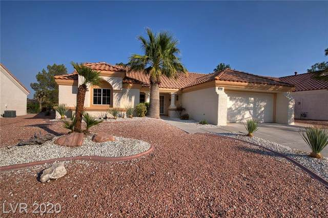 2848 Bluff Point Drive, Las Vegas, NV 89134 (MLS #2250446) :: Hebert Group | Realty One Group