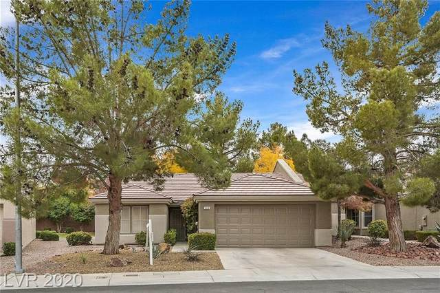 503 Hidden Garden Place, Henderson, NV 89012 (MLS #2254846) :: Vestuto Realty Group