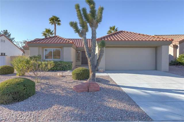 8813 Smokey Drive, Las Vegas, NV 89134 (MLS #2260920) :: Team Michele Dugan