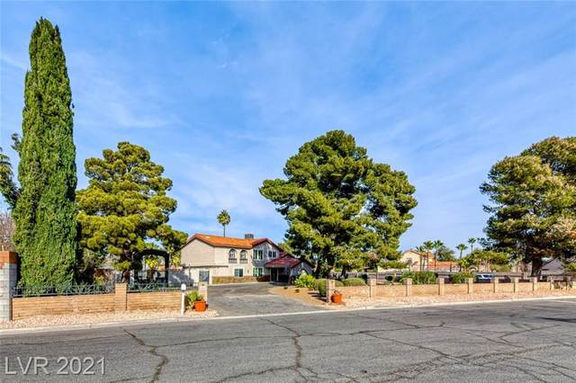 2082 Camero Avenue, Las Vegas, NV 89123 (MLS #2261153) :: Signature Real Estate Group
