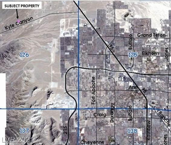Elvis Alive Drive, Las Vegas, NV 89166 (MLS #2261242) :: Team Michele Dugan
