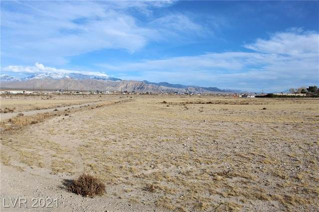 1861 E Ironhorse Street, Pahrump, NV 89048 (MLS #2264980) :: ERA Brokers Consolidated / Sherman Group