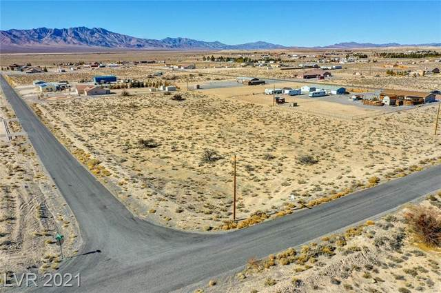 2450 Traci Street, Pahrump, NV 89048 (MLS #2265666) :: ERA Brokers Consolidated / Sherman Group