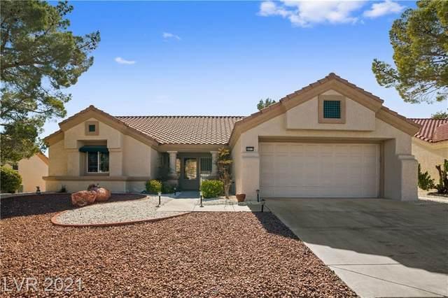 8917 Pennystone Avenue, Las Vegas, NV 89134 (MLS #2269465) :: ERA Brokers Consolidated / Sherman Group
