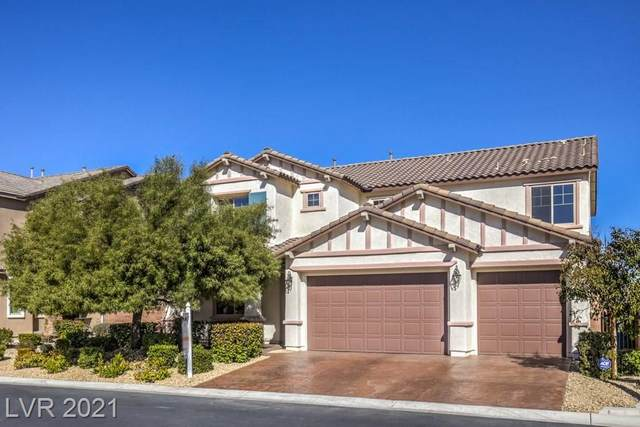 10108 Amana Oaks Avenue, Las Vegas, NV 89166 (MLS #2269521) :: Jeffrey Sabel