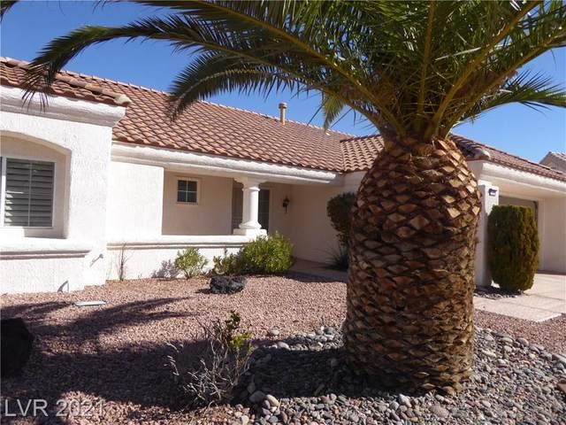 3108 Gundy Court, Las Vegas, NV 89134 (MLS #2270181) :: ERA Brokers Consolidated / Sherman Group