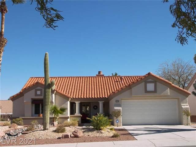 2506 Sungold Drive, Las Vegas, NV 89134 (MLS #2271889) :: ERA Brokers Consolidated / Sherman Group